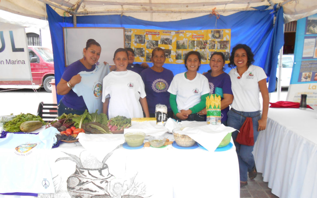 Enlargement and Follow-up of the Food Security and Sovereignty Program with Engaged Families of the Community of El Pescadero, BCS